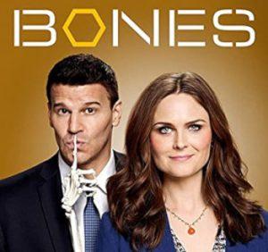 Bones Staffel 13 Episodenguide